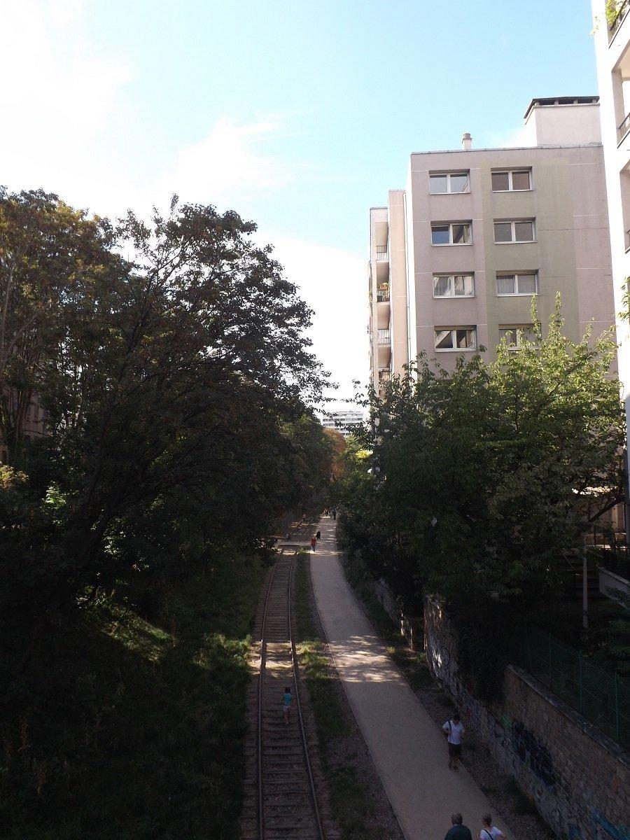 DSCF1630